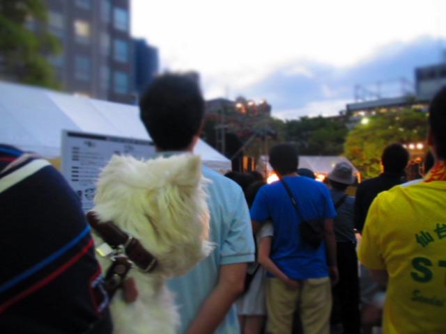 今年のはな(87)の日は仙台七夕を見に行きました♪_f0039907_15491695.jpg