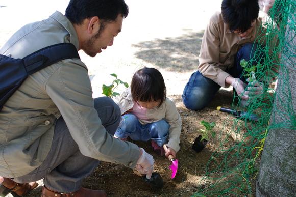 「親子で緑のカーテンをつくろう」開催しました_e0235911_9323338.jpg