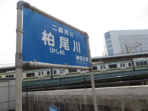b0121015_1203210.jpg