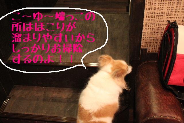 b0130018_2363686.jpg