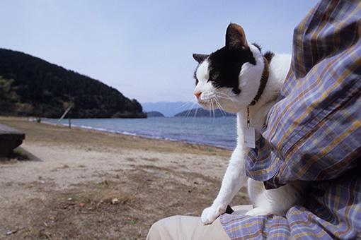 琵琶湖・関西2013_b0259218_1592271.jpg