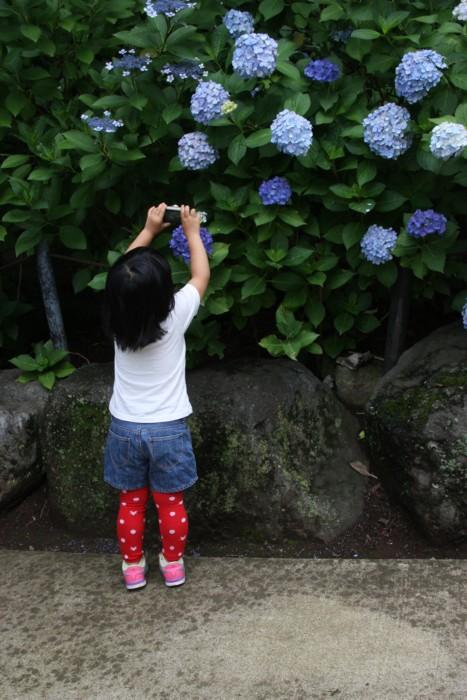 小さなカメラマン_f0055131_9301590.jpg
