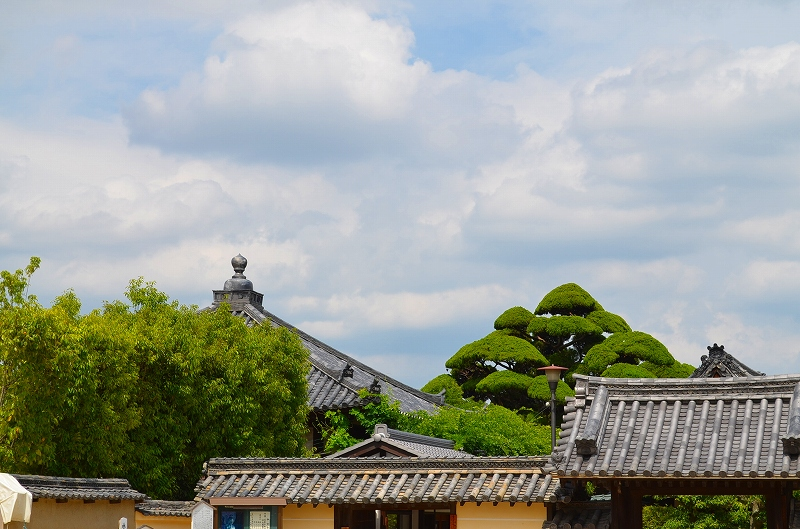 昔は『中宮寺』の弥勒菩薩が有名だったが・・・_e0237645_17173441.jpg