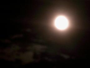 スーパームーンの次の夜_b0273973_2323878.jpg