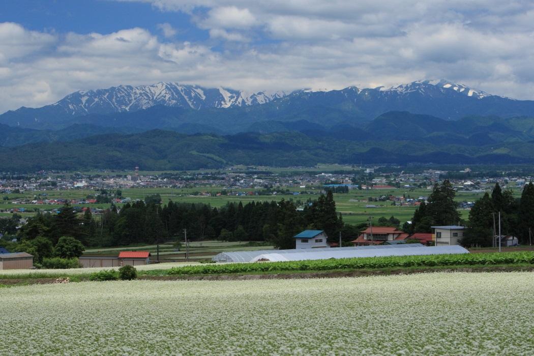 雄国そば畑と飯豊連峰 2013・06・23_e0143883_21582636.jpg