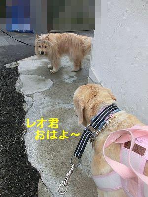 界隈ガイド第2弾_e0222588_13501072.jpg
