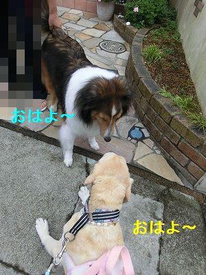 界隈ガイド第2弾_e0222588_13503836.jpg