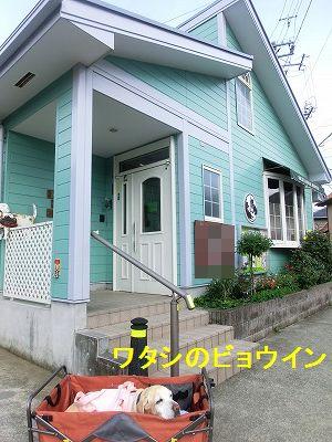 界隈ガイド第2弾_e0222588_13592788.jpg