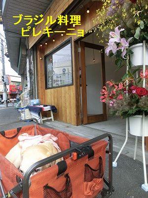 界隈ガイド第2弾_e0222588_1359515.jpg