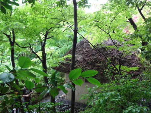 京都 鈴虫寺_f0093292_14285892.jpg