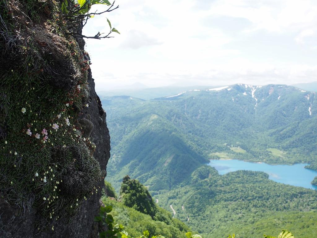 6月23日、恵庭岳-その2-_f0138096_1424309.jpg