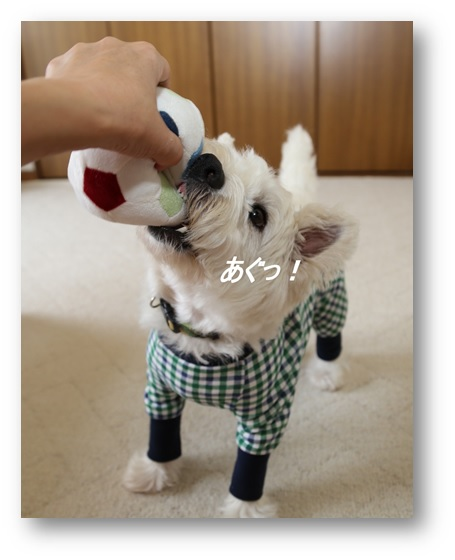 れでままさんに作ってもらった可愛いお洋服(^^)_a0161111_13105369.jpg