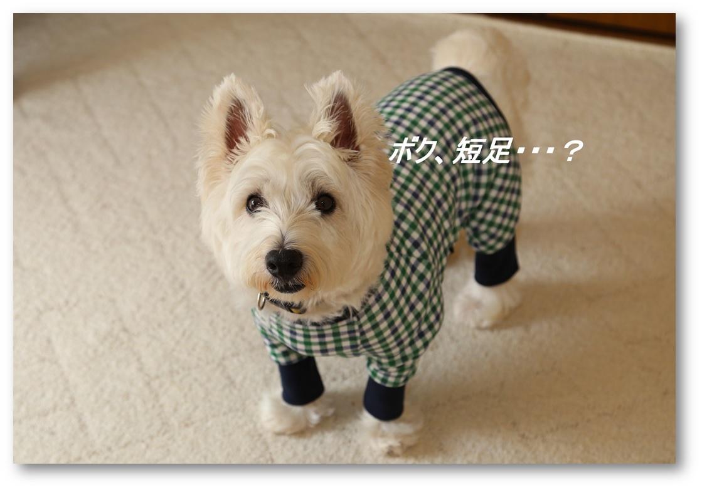れでままさんに作ってもらった可愛いお洋服(^^)_a0161111_1332041.jpg
