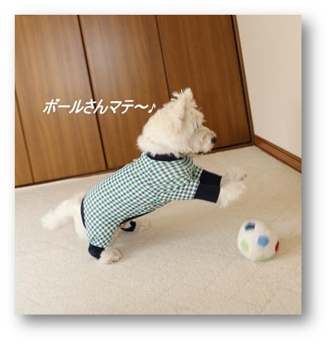 れでままさんに作ってもらった可愛いお洋服(^^)_a0161111_1374560.jpg