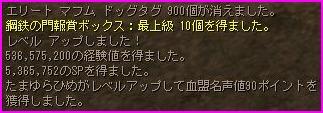 b0062614_3582732.jpg