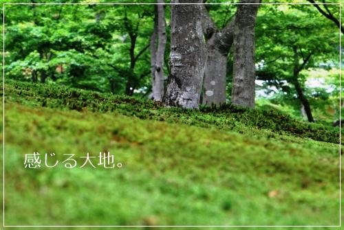 f0200114_14221627.jpg