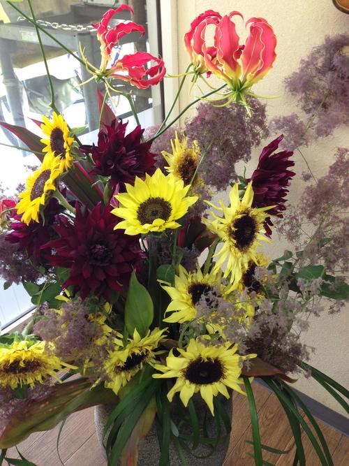 今週のお花とセール情報_a0200423_14112369.jpg