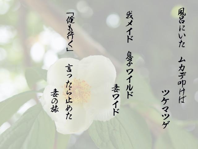 f0103534_22133060.jpg