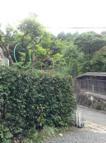 福岡⇔佐賀 n°2_a0262845_14143838.jpg