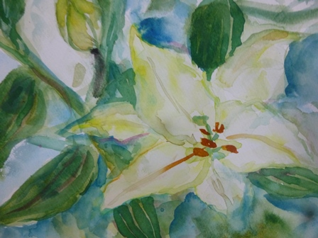 あでやかなり、百合の花!_a0053480_2012295.jpg