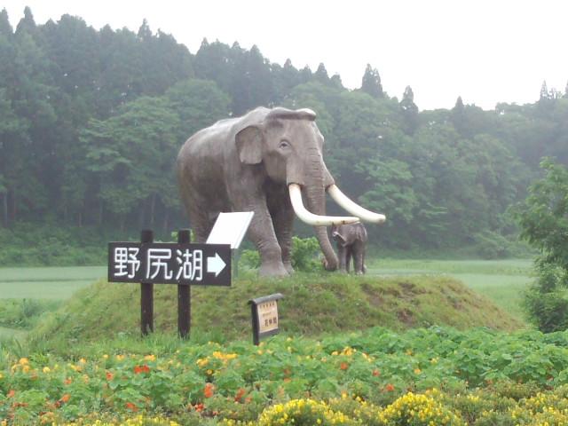 行ってきました、野尻湖。 (中川さんより_a0097491_19121222.jpg