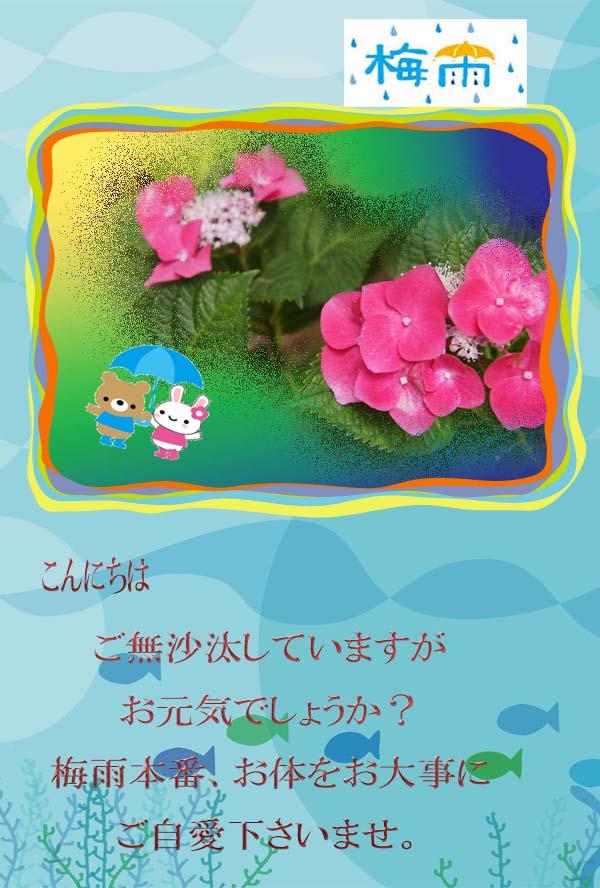 f0047824_2075396.jpg