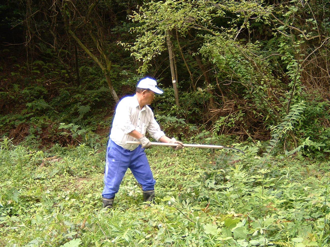 自然散策会:草刈り_c0239329_1803455.jpg