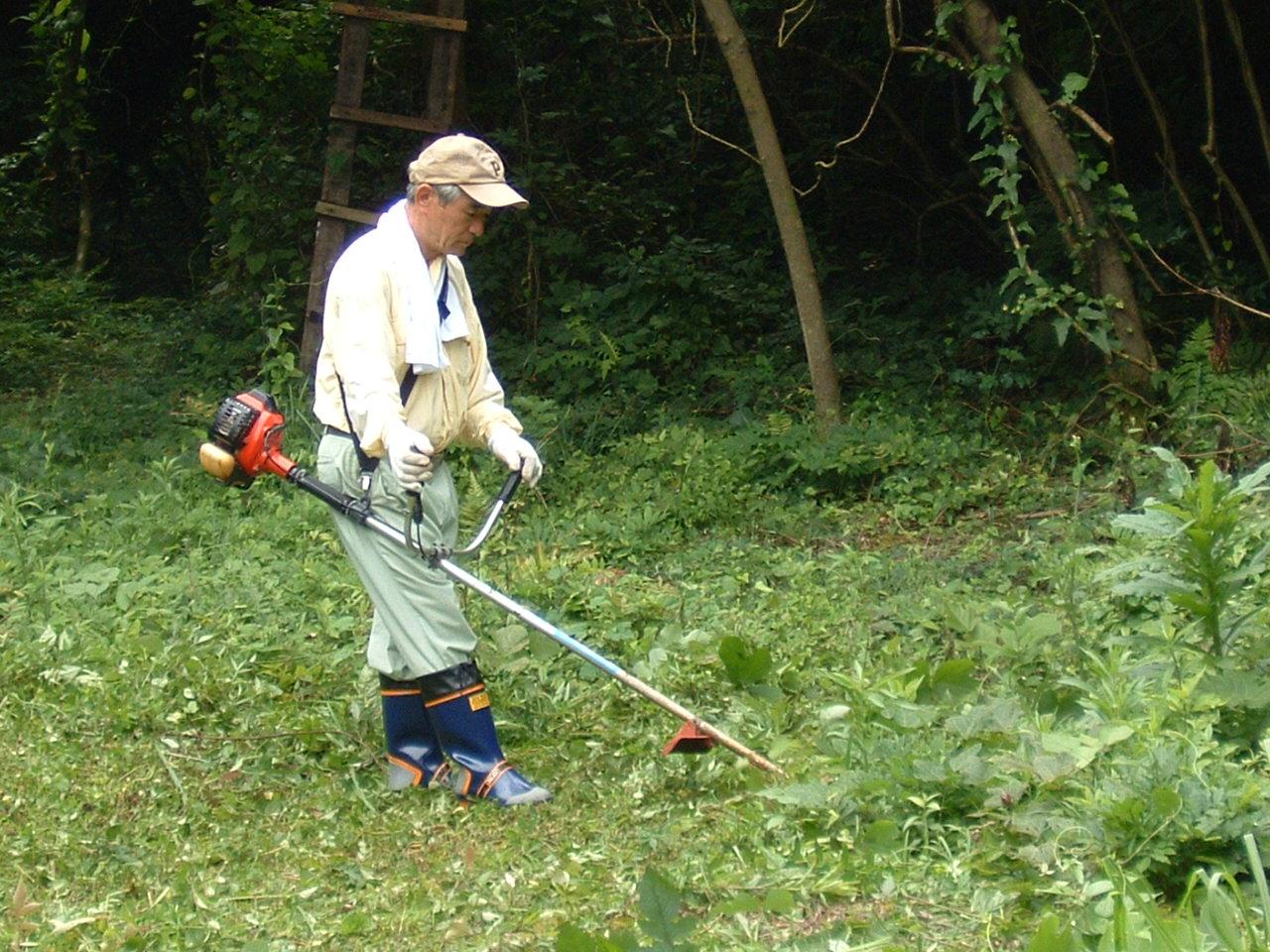 自然散策会:草刈り_c0239329_1804359.jpg