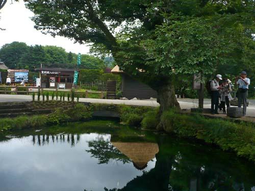 バスで行く富士山麓巡り_d0127634_1143219.jpg