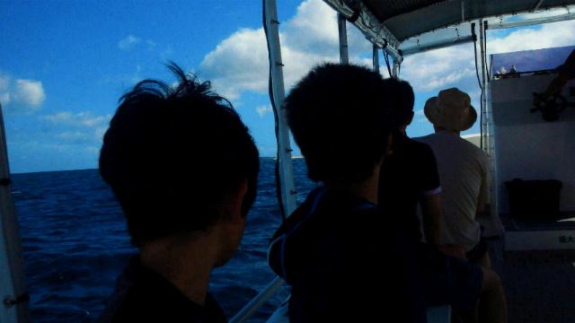 八重山の海風_b0195849_711113.jpg