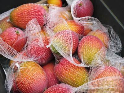 樹上完熟アップルマンゴー 煌(きらめき)の収穫!!_a0254656_18324471.jpg