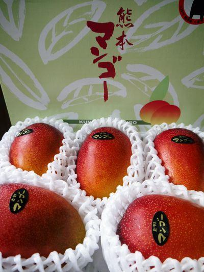 樹上完熟アップルマンゴー 煌(きらめき)の収穫!!_a0254656_187354.jpg