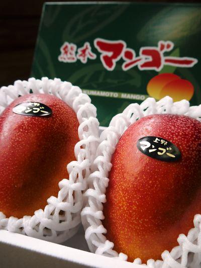 樹上完熟アップルマンゴー 煌(きらめき)の収穫!!_a0254656_1962028.jpg