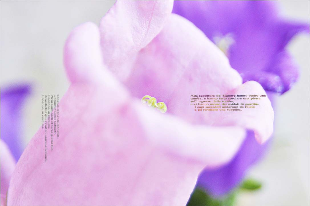 f0198771_235369.jpg