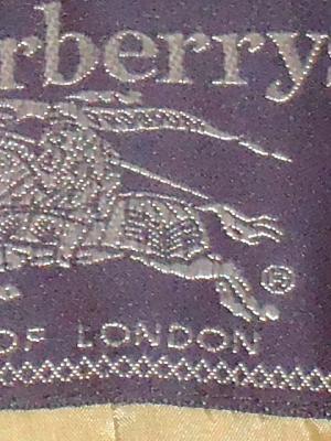 Burberry Prorsum_d0176398_1828857.jpg