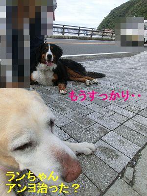 美容院と車椅子のお話_e0222588_1552397.jpg