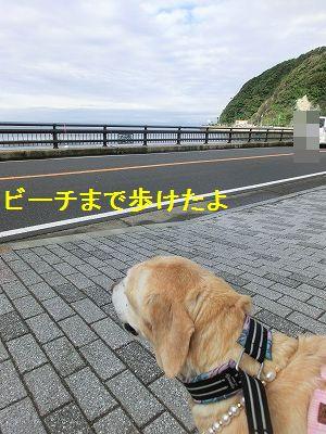美容院と車椅子のお話_e0222588_155983.jpg