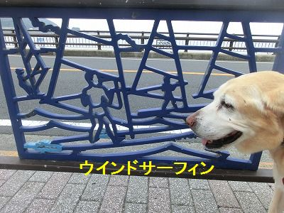 美容院と車椅子のお話_e0222588_1571212.jpg