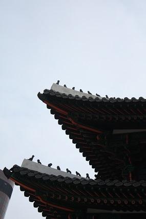 ソウル市内見学_c0127029_11909.jpg