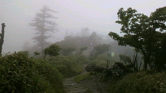 小雨の頂上です。朝の気温10℃。_c0089831_10373978.jpg