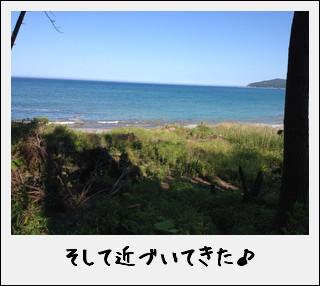 玉川浜と、たまたま玉ねぎ…だったのだ^^_c0259934_17495386.jpg