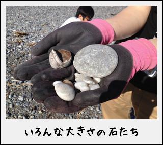 玉川浜と、たまたま玉ねぎ…だったのだ^^_c0259934_181894.jpg