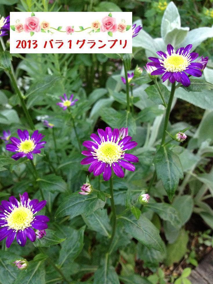 c0234938_14435769.jpg