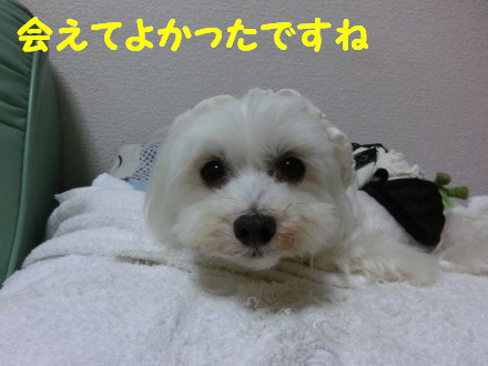 b0193480_206363.jpg