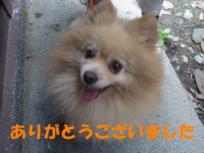 b0038381_142257.jpg