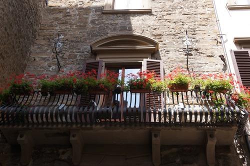 フィレンツェで市場に行こう!_f0106597_3163738.jpg