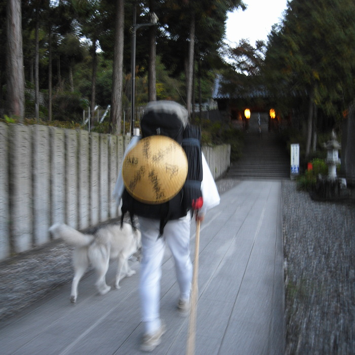 Memory of the second pilgrimage 1200km with husky HANA_c0049299_13333410.jpg