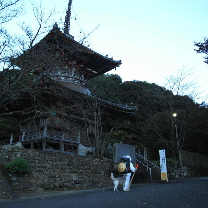 Memory of the second pilgrimage 1200km with husky HANA_c0049299_13333942.jpg