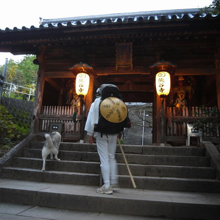 Memory of the second pilgrimage 1200km with husky HANA_c0049299_13341525.jpg