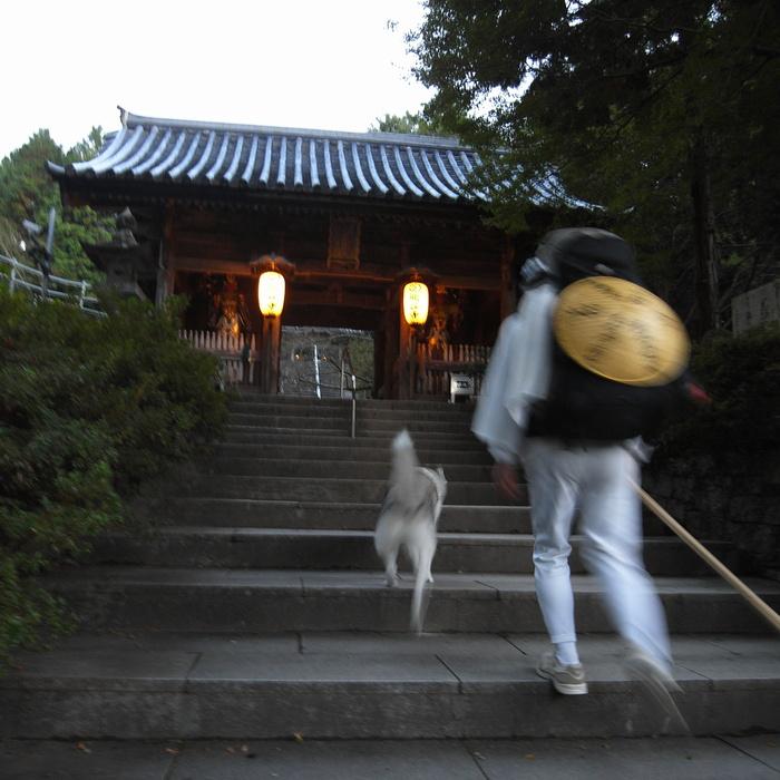 Memory of the second pilgrimage 1200km with husky HANA_c0049299_13342995.jpg